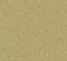 Allegro Kiwi